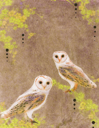 Barn-Owls-by-Hadley-Hutton.jpg