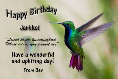 hummingbird-happy-birthday!!.jpg