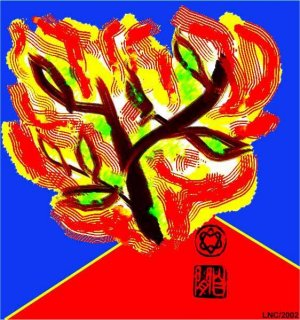 Burning Bush (on No Middleman page) 2002.JPG
