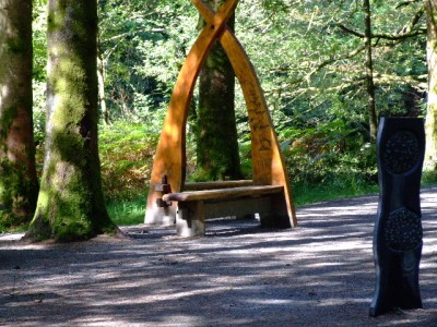 The Loving Seat ?  Coed y Brenin Forest Park